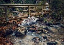 Wooden bridge over the mountain stream Stock Photos