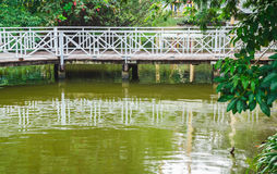 Wooden bridge over a pond Royalty Free Stock Images