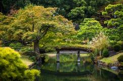 Wooden bridge over the pond autumn maple trees Stock Photos