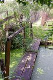 Wooden bridge over a pond with green duckweed Stock Images