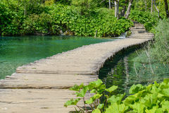 Wooden Bridge over a Pond Stock Image