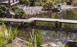 Wooden bridge over the pond Royalty Free Stock Photo