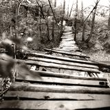 Wooden bridge over river Stock Photos