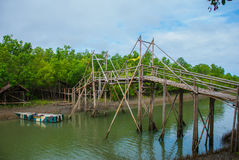 Wooden bridge over the river and boat, Panay island, Philippines. Bakhawan eco-park. Wooden bridge over the river and boat in the Bakhawan eco-park, Panay island Stock Image