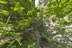 Wooden bridge over river, Erma River Gorge Stock Images