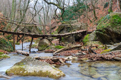 Wooden bridge over the river forest. Wooden bridge over the fast forest river stock photos