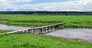 Wooden bridge over river in green field near forest Royalty Free Stock Image
