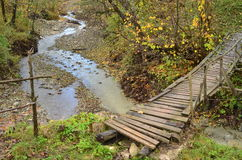 Wooden bridge over river Stock Images