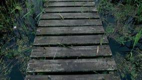 Wooden bridge over river. Walking on a wooden bridge across river on summer day stock video