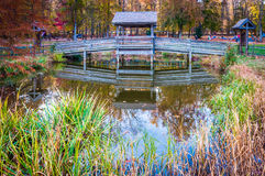 Wooden bridge over small pond in Leesylvania State Park, Virgini Royalty Free Stock Images
