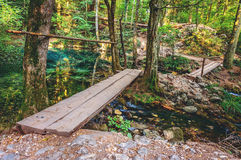 Wooden bridge over a small river Royalty Free Stock Images