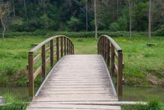 Wooden bridge over a small river with vegetation stock images