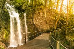 Wooden bridge over a small waterfall in the forest Royalty Free Stock Photography