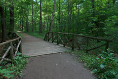 Wooden Bridge Over Stream Stock Image