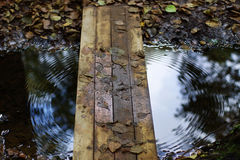 Wooden bridge over stream, circles on water, reflection of autumn trees. Stock Photography