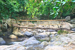 Wooden bridge over the stream Royalty Free Stock Images