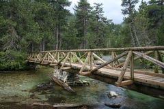 Wooden bridge over a stream royalty free stock photos