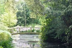 Wooden Bridge over stream in forest Royalty Free Stock Photos
