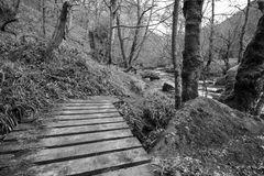 Wooden bridge over stream at Hardcastle Crags Royalty Free Stock Photo