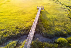 Wooden bridge over a swamp from above. Wooden bridge over a swamp aerial view Royalty Free Stock Image