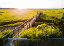 Wooden bridge over a swamp in Wildwood New Jersey. Aerial view Royalty Free Stock Photo
