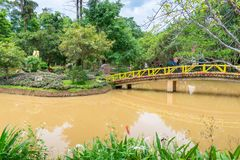 Wooden bridge over yellow river with tropical trees in the park. Wooden bridge over yellow river with tropical trees in a park, architecture, background royalty free stock photos