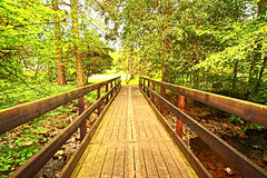 Wooden bridge in the park Stock Images