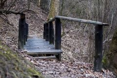 Wooden bridge in the park. Bridge on the educational path. Seaso royalty free stock image