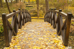 Wooden bridge in a park. Front view of old Wooden bridge in autumn park Stock Images