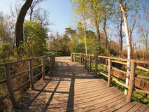 Wooden bridge in the park. Wooden bridge in a park with a handrail in the spring sunny day royalty free stock images