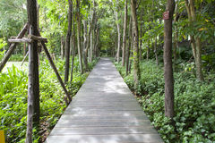 Wooden bridge in the park Royalty Free Stock Images