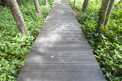 Wooden bridge in the park Stock Photography