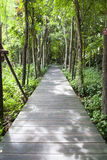 Wooden bridge in the park Royalty Free Stock Image