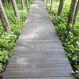 Wooden bridge in the park Stock Photos