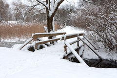 Wooden bridge in park Royalty Free Stock Photo