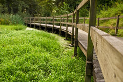 Wooden bridge path Stock Photo