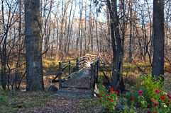 Wooden bridge and path Stock Image