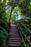 Wooden bridge path in asia amongst trees Royalty Free Stock Photos