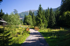 Wooden bridge and path in Carpathian mountains, Czech Republic Stock Photo