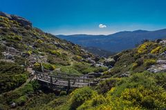 Wooden bridge in the path for hiking Stock Photo
