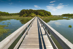 Wooden bridge in perspective. Leading to an enchanted island on old Cape Cod Stock Photography