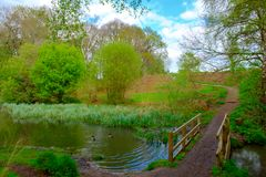 Ravine Pond Bridge. Wooden bridge at Ravine pond in spring, Wimbledon Common, London, England stock image