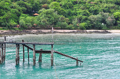 Wooden bridge into sea. Forest background Stock Photo