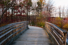 Wooden Bridge. A bridge with wooden slats and rails in the woods Royalty Free Stock Image