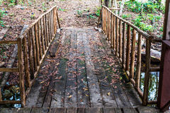Wooden bridge small over the river. Stock Images