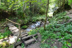 Wooden bridge and small suites of waterfalls on the way to sapte scari waterfall from Brasov. Royalty Free Stock Photos