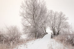 Wooden bridge in a snowy landscape Stock Photos
