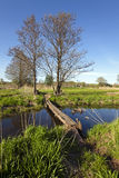 The wooden bridge. (some boards), for transition through the small river. rural areas Royalty Free Stock Image