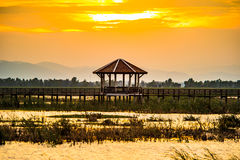 Wooden bridge spanning the lake wider. The vast marsh at sunset in the park, one of Thailand Stock Images