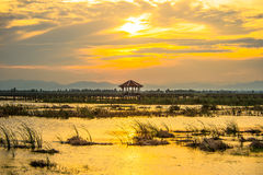 Wooden bridge spanning the lake wider. The vast marsh at sunset in the park, one of Thailand Royalty Free Stock Photo